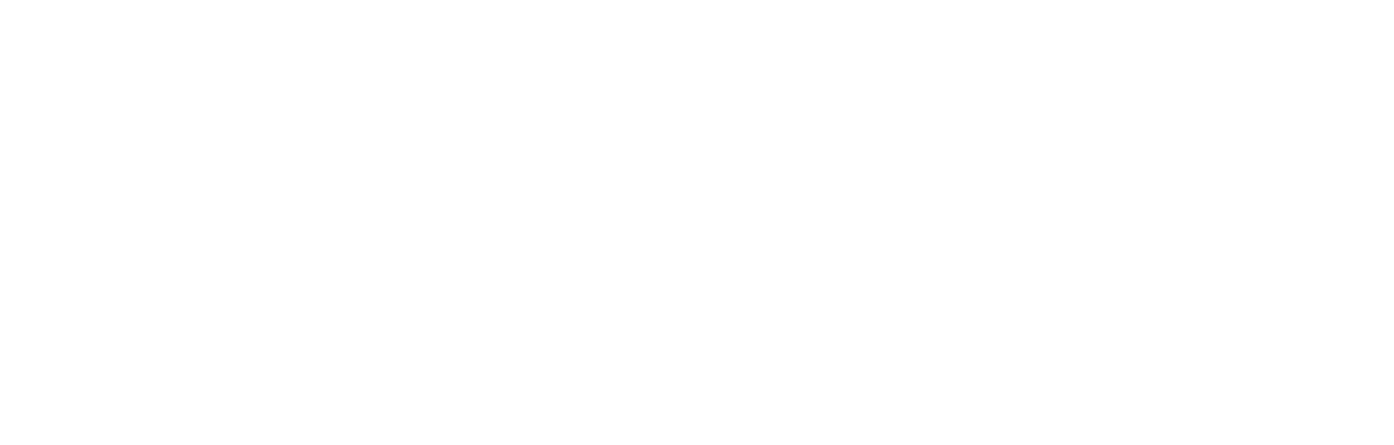 Owl Books Photography
